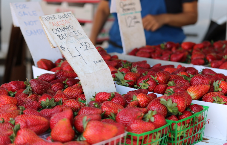 a farmer markets stand showing fresh strawberries