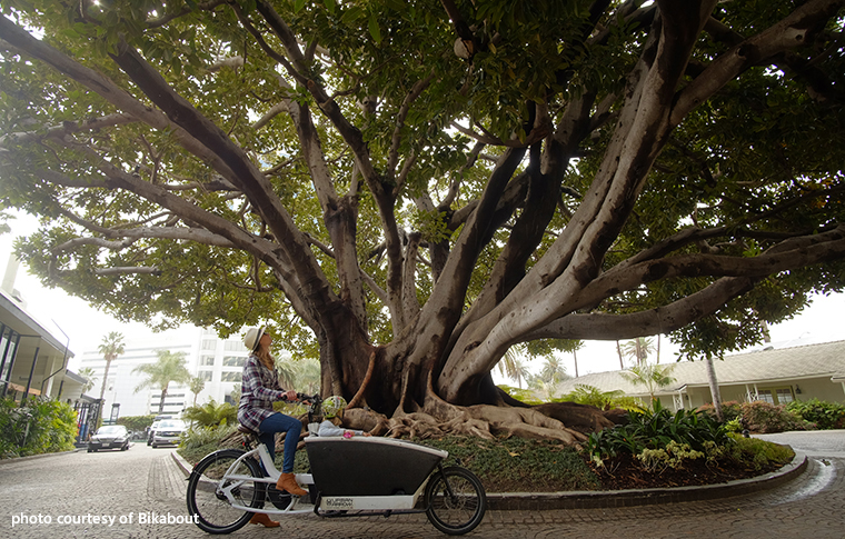 woman riding cargo bike with child through a neighborhood, under a big tree